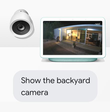 Show the backyard camera